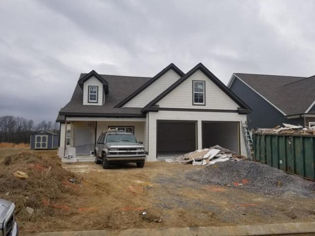 7425 Keely Run, Ooltewah, TN 37363 (MLS #1276143) :: Denise Murphy with Keller Williams Realty