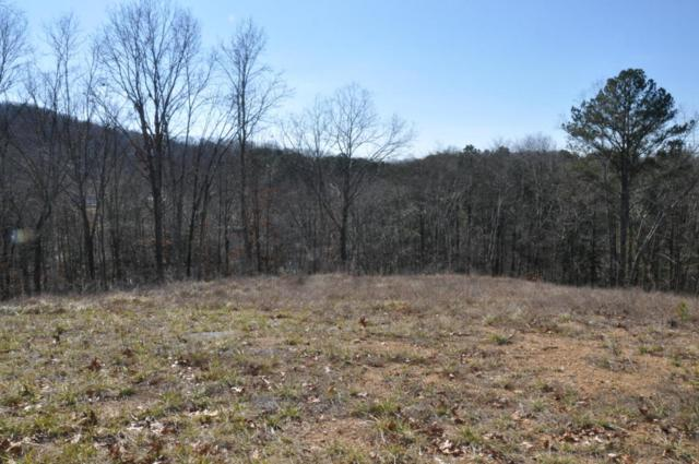 5236 Abigail Ln, Chattanooga, TN 37416 (MLS #1276377) :: Chattanooga Property Shop