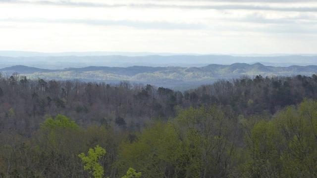 0 Lookout Crest Ln #12, Lookout Mountain, GA 30750 (MLS #1276480) :: Chattanooga Property Shop