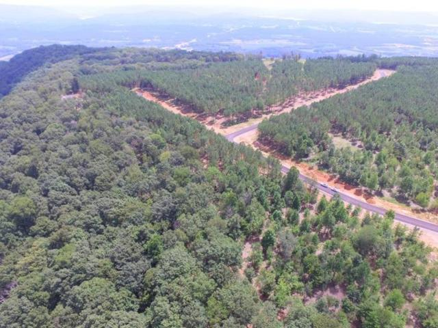 0 Wilderness Dr Lot 75, Jasper, TN 37347 (MLS #1276742) :: The Robinson Team