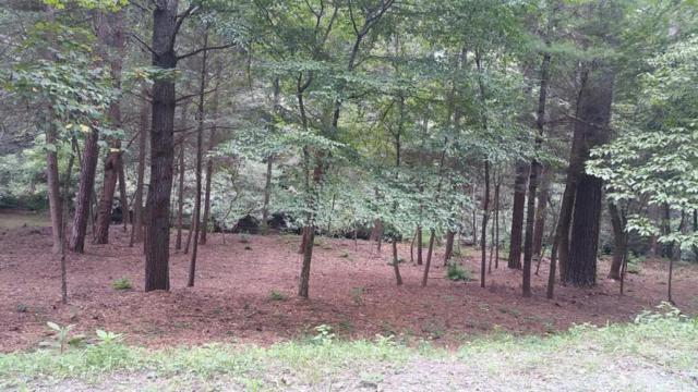 Lot 9 & 10 Mountaintown Creek, Elijay, GA 30540 (MLS #1276979) :: The Robinson Team