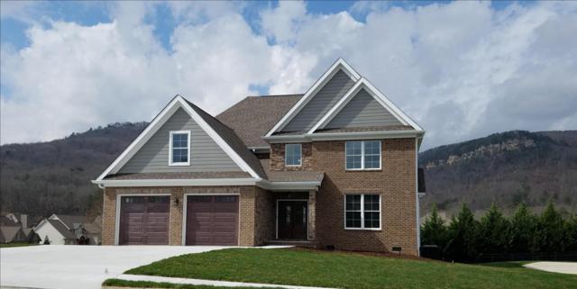 551 Blue Canyon Ln, Hixson, TN 37343 (MLS #1277207) :: Chattanooga Property Shop