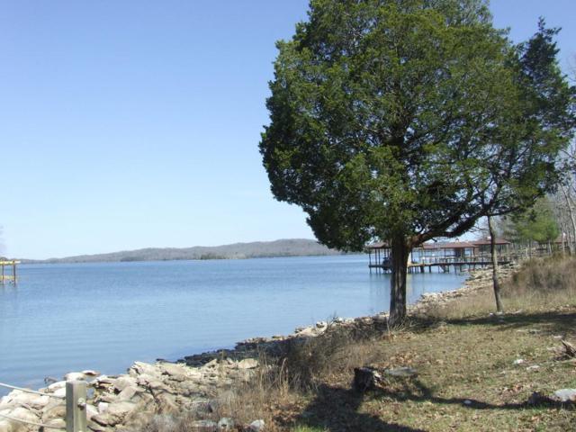 165 Shoreline Dr, Spring City, TN 37381 (MLS #1277273) :: The Robinson Team