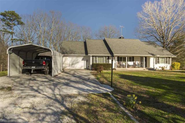 230 Ewing Cemetery Rd, Spring City, TN 37381 (MLS #1277935) :: The Robinson Team