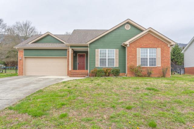 90 Morse Dr, Flintstone, GA 30725 (MLS #1278799) :: Chattanooga Property Shop