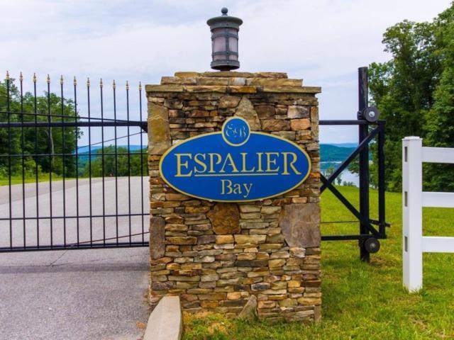 49 Espalier Dr Lot 49, Decatur, TN 37322 (MLS #1278825) :: The Robinson Team