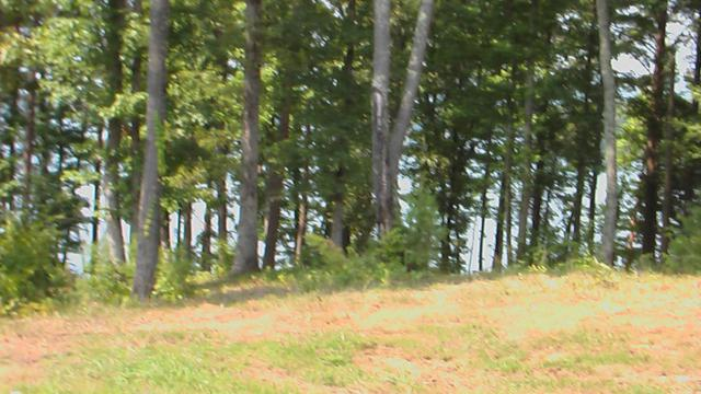 Lot 20 Spring Crossing Dr #20, Spring City, TN 37381 (MLS #1279132) :: Chattanooga Property Shop