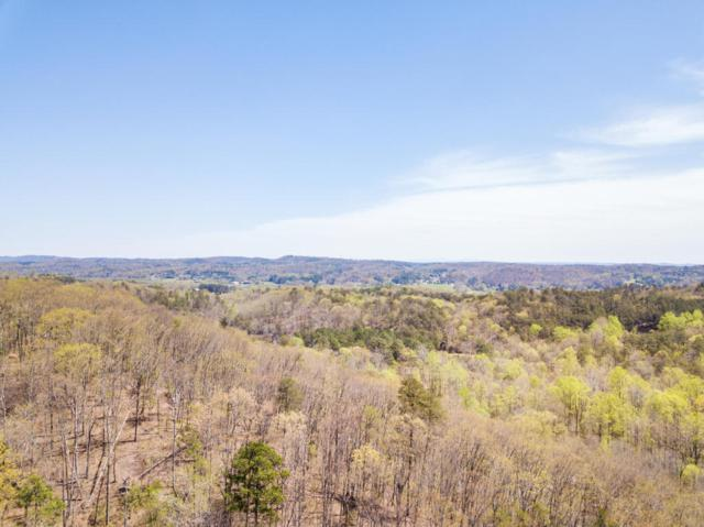 0 Powder Springs Cir, Flintstone, GA 30725 (MLS #1279574) :: The Mark Hite Team