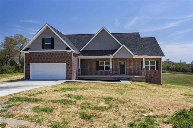 105 Overlook Dr, Dayton, TN 37321 (MLS #1279786) :: Chattanooga Property Shop