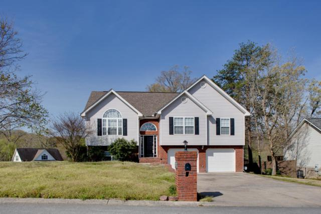 211 Elaine Dr, Flintstone, GA 30725 (MLS #1279907) :: Chattanooga Property Shop
