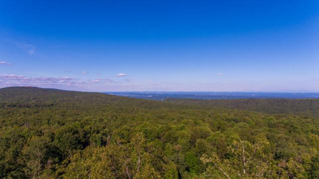 00 Lookout Crest Ln, Lookout Mountain, GA 30750 (MLS #1279986) :: The Robinson Team