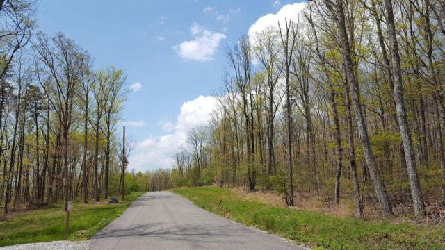 Lot #118 Gray Rock View, Pikeville, TN 37367 (MLS #1281141) :: The Robinson Team