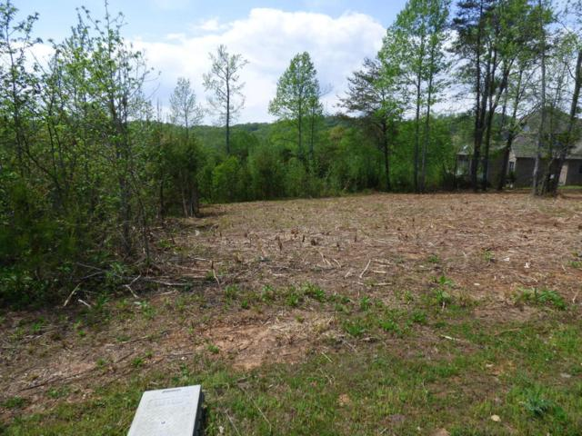 Lot 64 Blue Heron #64, Harriman, TN 37748 (MLS #1281213) :: The Robinson Team