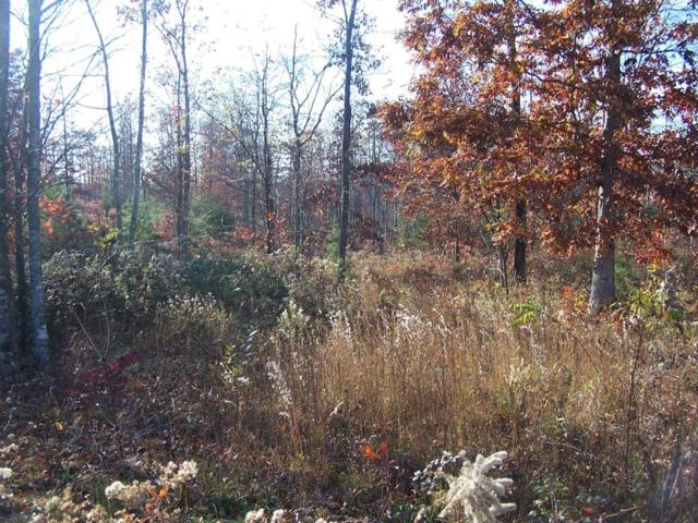 Lot 40-41 Greenfields Rd, Spencer, TN 38585 (MLS #1281522) :: Chattanooga Property Shop