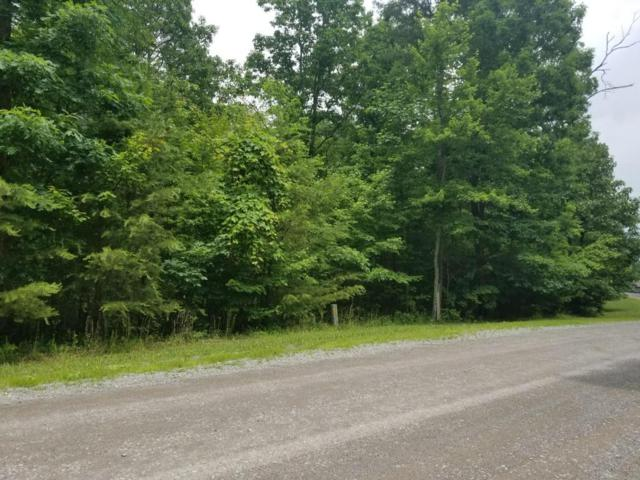 0 Bluff View Dr #529, Dunlap, TN 37327 (MLS #1282544) :: Keller Williams Realty | Barry and Diane Evans - The Evans Group
