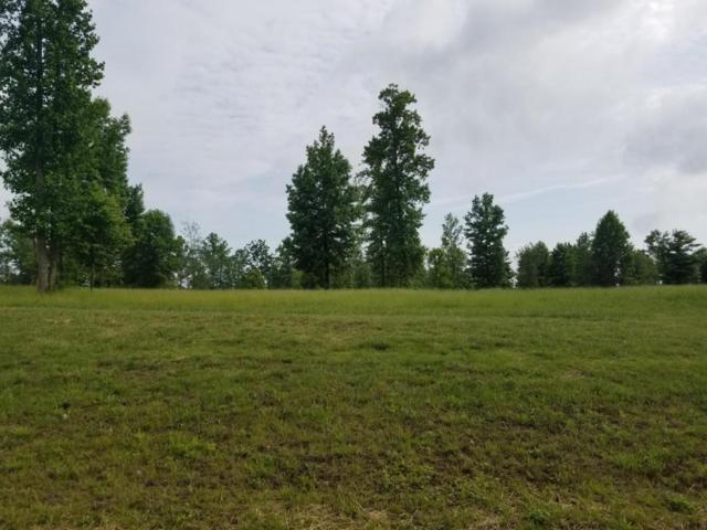 Lot 158 Raulston Falls Road #158, Jasper, TN 37347 (MLS #1282938) :: The Robinson Team