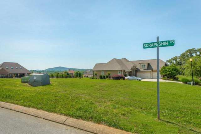 293 Rain Dance Cir #293, Ringgold, GA 30736 (MLS #1283045) :: Keller Williams Realty | Barry and Diane Evans - The Evans Group