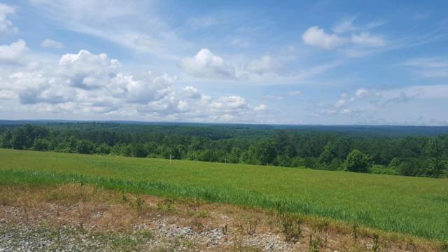 5 Vista Ridge Rd, Graysville, TN 37338 (MLS #1283261) :: The Robinson Team