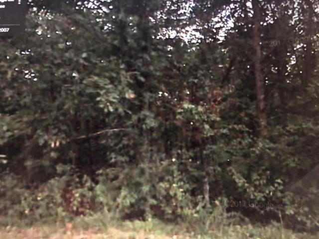 1508 Rocky Ridge Ln, Signal Mountain, TN 37377 (MLS #1283408) :: The Robinson Team