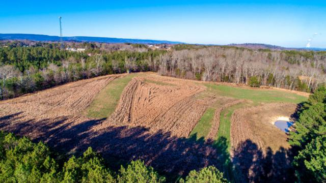 0 Blythes Ferry Rd, Dayton, TN 37321 (MLS #1283577) :: Chattanooga Property Shop