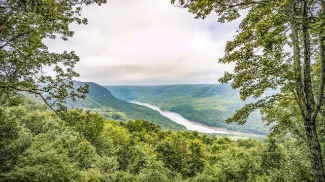 205 Healing Bluff Rd, Chattanooga, TN 37419 (MLS #1283944) :: Chattanooga Property Shop