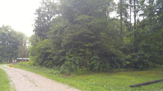 Lot 19 Pine Rd, Pikeville, TN 37367 (MLS #1283960) :: Chattanooga Property Shop