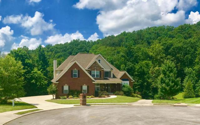4378 Brush Creek Ct, Apison, TN 37302 (MLS #1284158) :: Keller Williams Realty | Barry and Diane Evans - The Evans Group