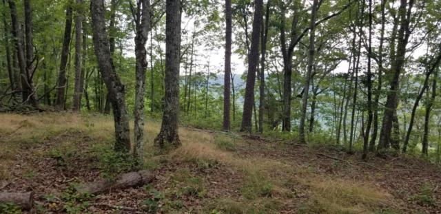 9 Old Harris Turnpike Road #9, South Pittsburg, TN 37380 (MLS #1284262) :: The Robinson Team