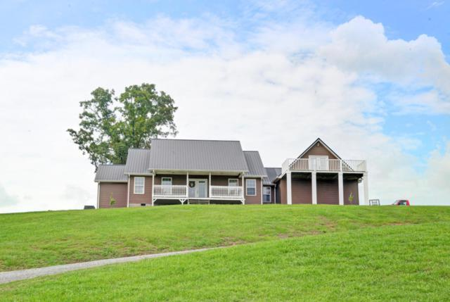348 Kathy Ln, Dayton, TN 37321 (MLS #1284578) :: The Mark Hite Team