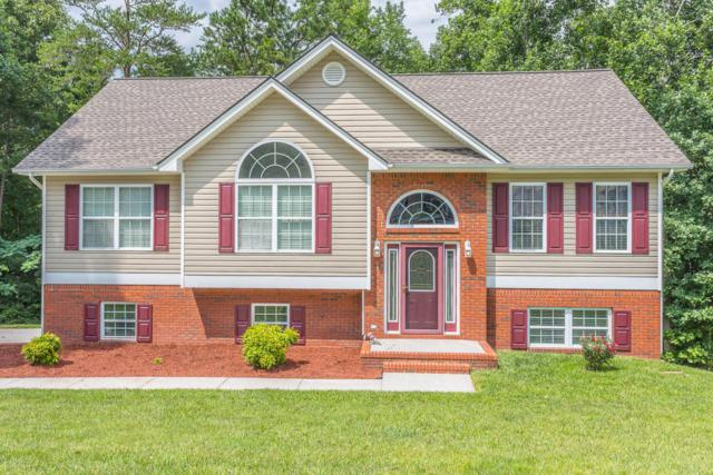 256 N Victor Dr, Flintstone, GA 30725 (MLS #1284625) :: The Robinson Team