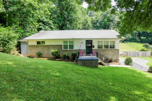 117 Lavonia Ave, Chattanooga, TN 37415 (MLS #1284833) :: The Edrington Team