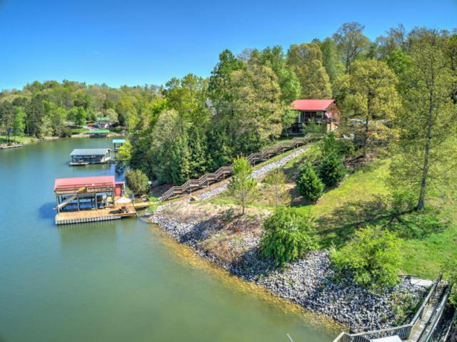 216 Overlook Dr, Ten Mile, TN 37880 (MLS #1285266) :: Keller Williams Realty | Barry and Diane Evans - The Evans Group