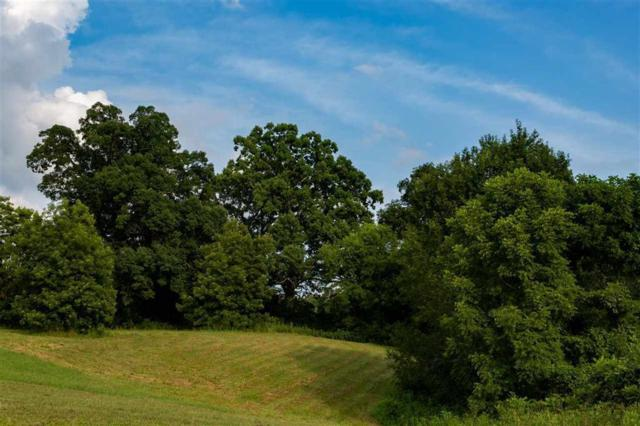 Lot 14 Espalier Dr #14, Decatur, TN 37322 (MLS #1285628) :: Keller Williams Realty | Barry and Diane Evans - The Evans Group