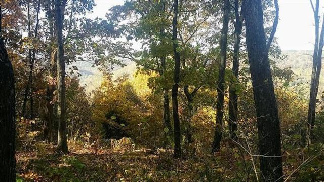 484 Greenbriar Overlook Dr, South Pittsburg, TN 37380 (MLS #1286420) :: The Robinson Team