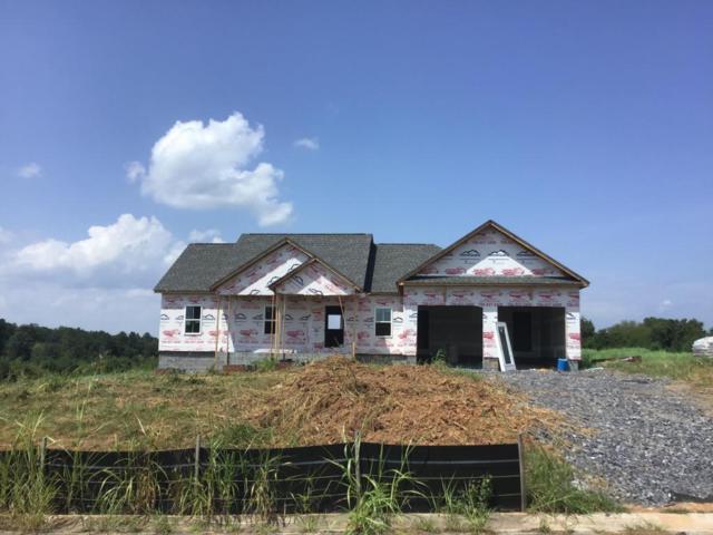 0 Farm View Cir, Rock Spring, GA 30739 (MLS #1286675) :: The Jooma Team