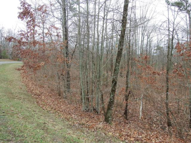 528 Bluff View Dr #528, Dunlap, TN 37327 (MLS #1286839) :: Chattanooga Property Shop