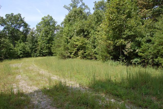 28 High Rocks Tr #28, Spencer, TN 38585 (MLS #1287079) :: Chattanooga Property Shop