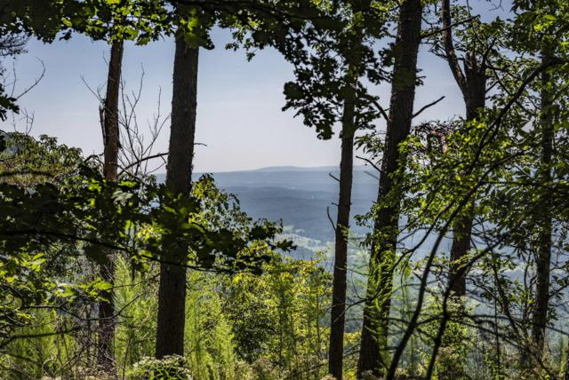 5 Tatum Overlook, Cloudland, GA 30731 (MLS #1287131) :: Chattanooga Property Shop