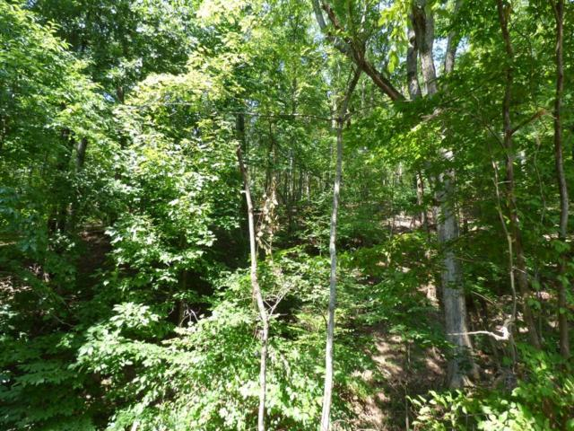 Lot 533 Rockview Dr #533, Spring City, TN 37381 (MLS #1287214) :: Keller Williams Realty | Barry and Diane Evans - The Evans Group