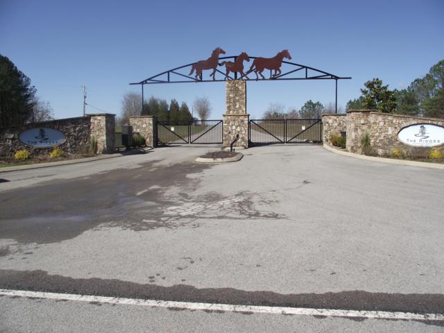 46 Thunder Ridge Dr, South Pittsburg, TN 37380 (MLS #1287300) :: Chattanooga Property Shop