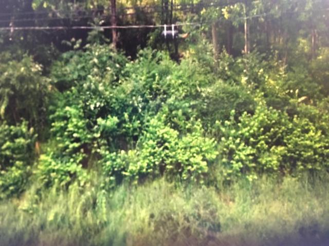 1003 Dallas Rd, Chattanooga, TN 37405 (MLS #1287315) :: Chattanooga Property Shop