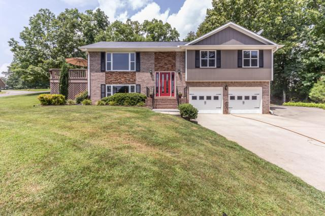672 Toestring Cove Rd, Spring City, TN 37381 (MLS #1287329) :: The Mark Hite Team