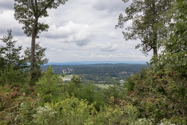 2265 Heavenly View Dr, Ooltewah, TN 37363 (MLS #1287500) :: Chattanooga Property Shop