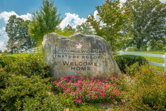 0 Big Falls Tr, Dunlap, TN 37327 (MLS #1287635) :: Keller Williams Realty | Barry and Diane Evans - The Evans Group
