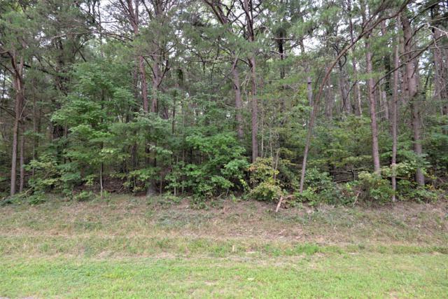 0 Payne Chapel Rd 2-B, Lookout Mountain, GA 30750 (MLS #1287651) :: The Edrington Team