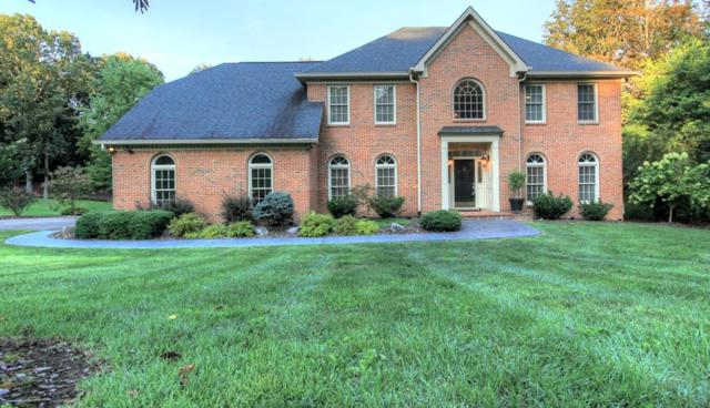 9413 Woody Hollow Dr, Chattanooga, TN 37421 (MLS #1288005) :: The Robinson Team