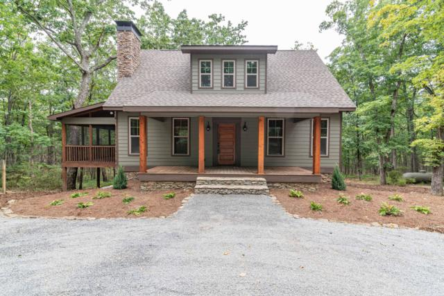 600 Tatum Mining Rd, Cloudland, GA 30731 (MLS #1288186) :: The Mark Hite Team