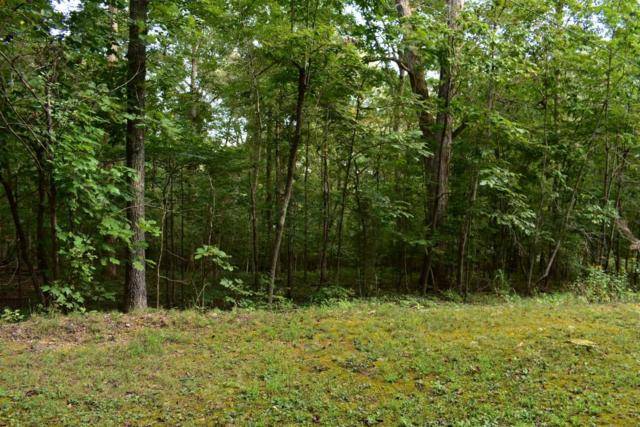 Lot176&177 Lakeview Dr 176 & 177, Spring City, TN 37381 (MLS #1288194) :: 7 Bridges Group