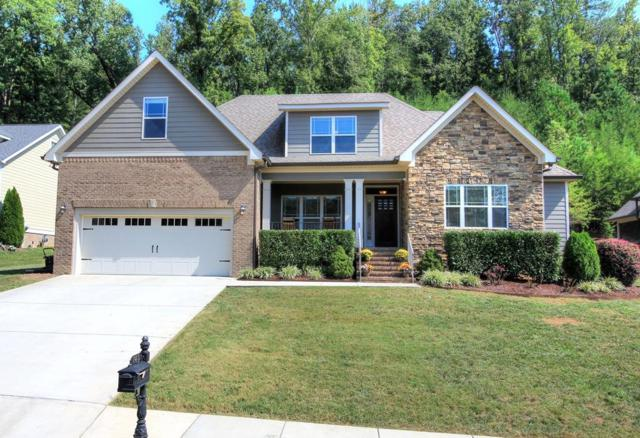 740 Shearer Cove Rd, Chattanooga, TN 37405 (MLS #1288498) :: The Edrington Team