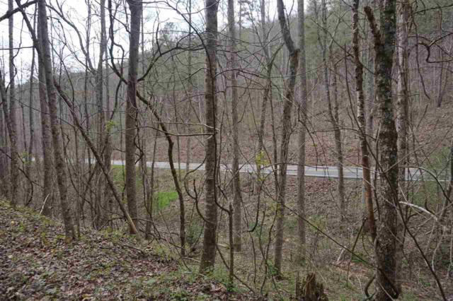 0 Tellico Reliance 20 Acres Rd, Reliance, TN 37369 (MLS #1288951) :: Chattanooga Property Shop